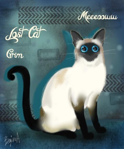 missingcat_serseri_by_begumaa-dczgyew